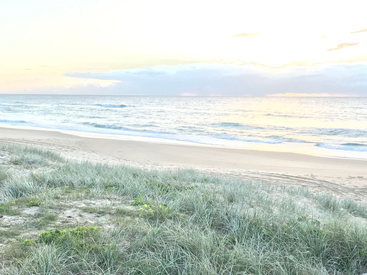 Coast Walk: Point Cartwright toKawana