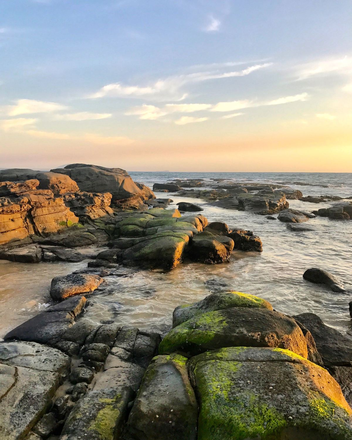 20 things to do on the Sunshine Coast thisSpring