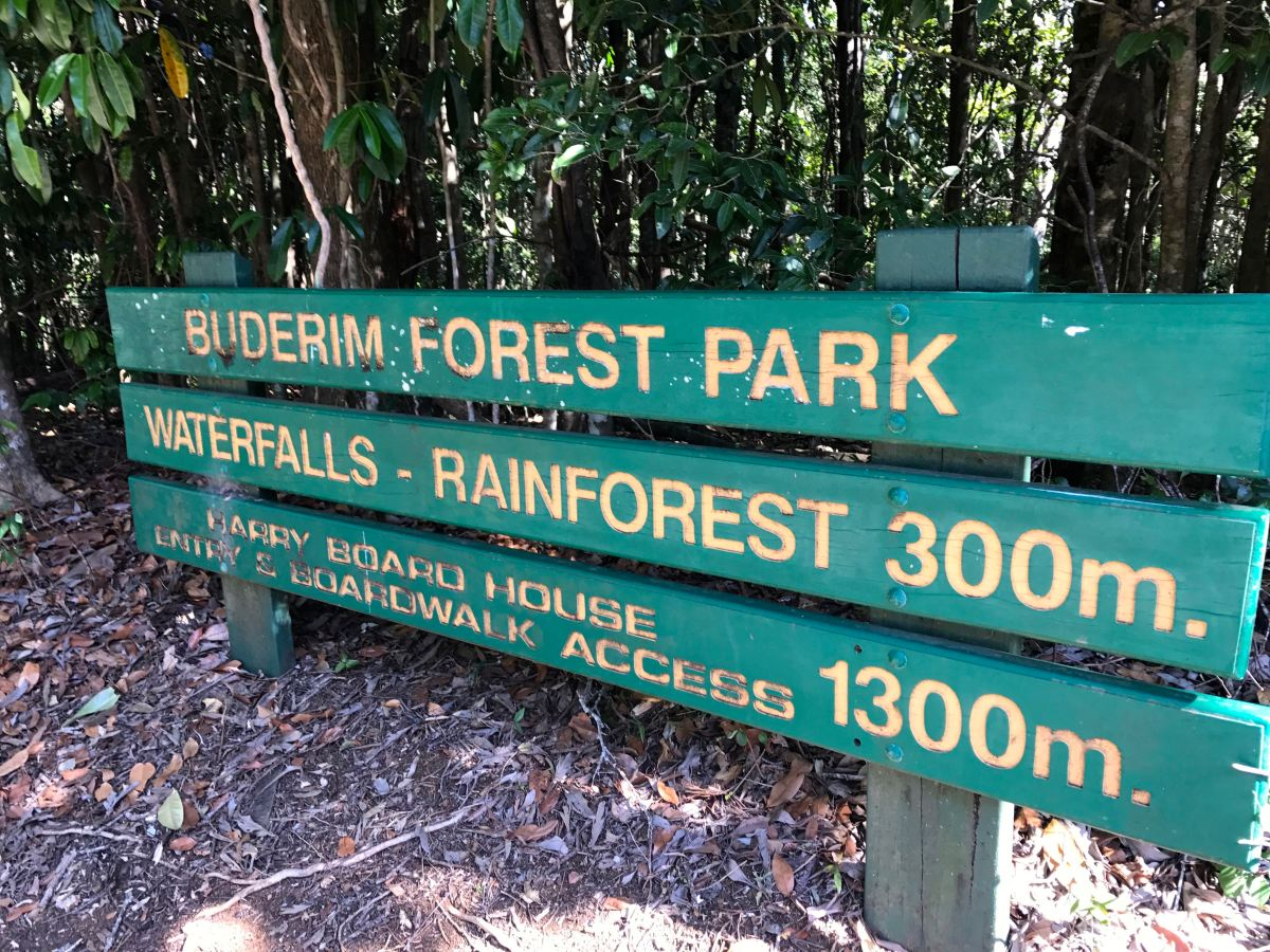 Buderim Forest Park and Serenity Falls