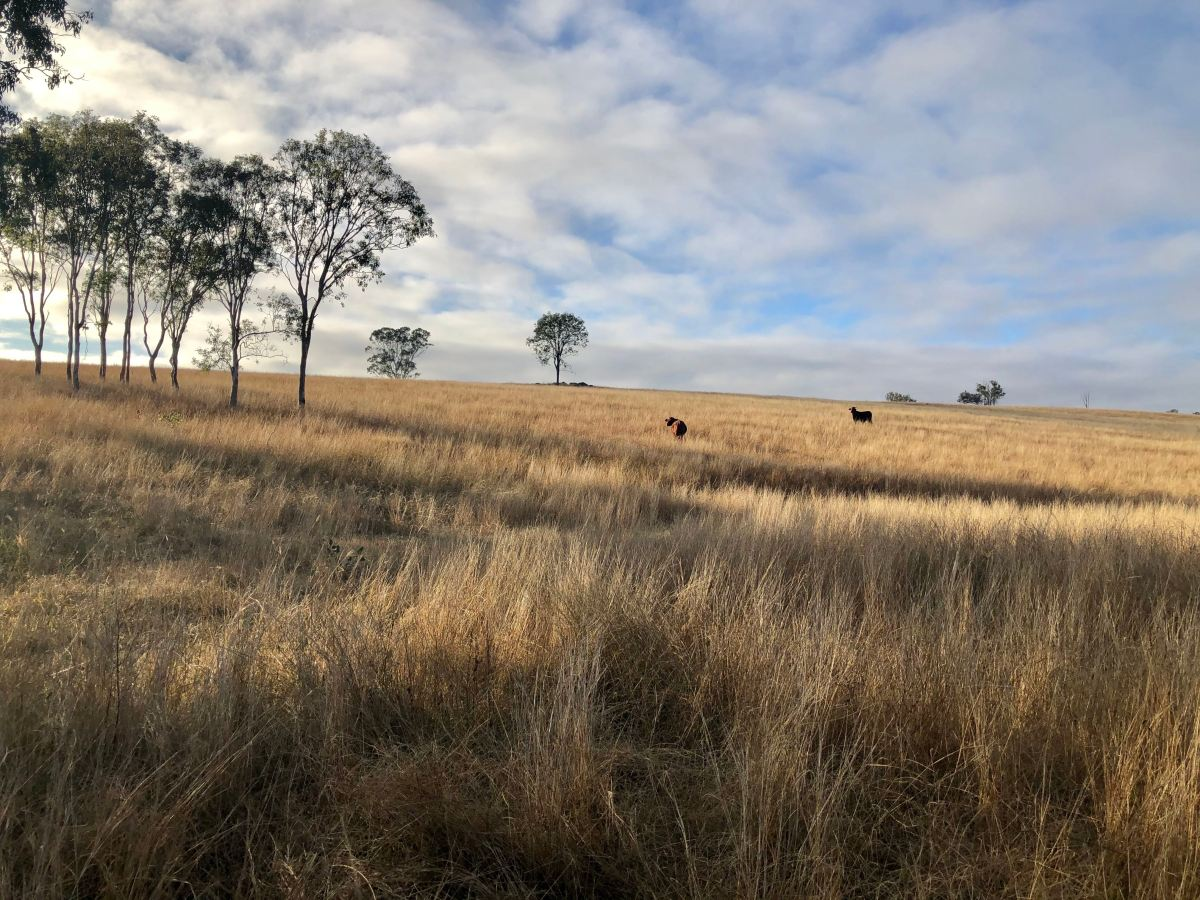 Escape To The Country – South BurnettRegion
